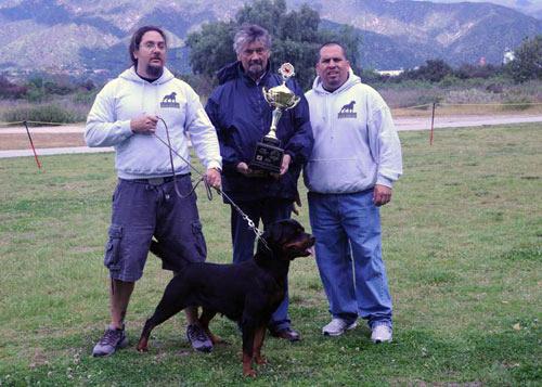 wenka_vom_kressbach_wins USRC_siegerin_2009